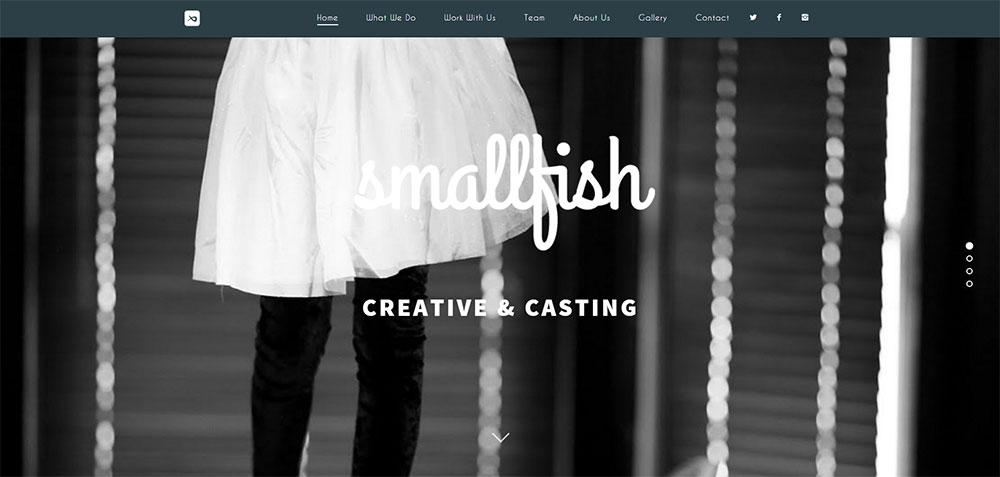 smallfish2